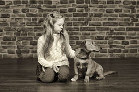 girl with red puppy  Stock Photo - 17787489