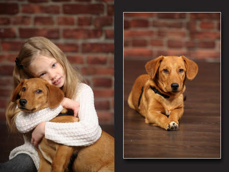 rhodesians: girl with red puppy hugs Stock Photo