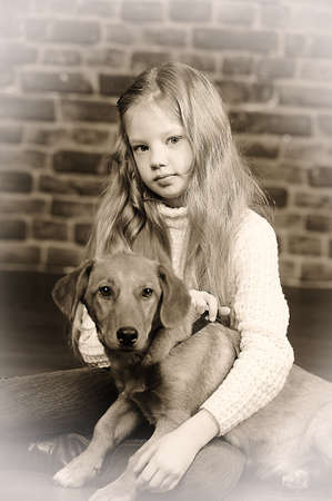 girl with red puppy Stock Photo - 17787496