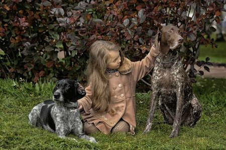 chica en el parque, y dos perros Foto de archivo