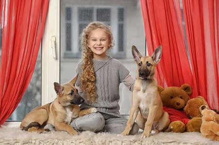 girl with two puppies photo