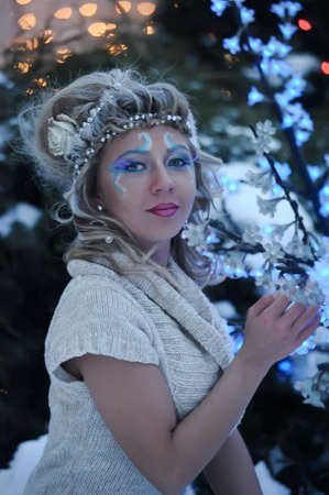 Winter Beauty Stock Photo - 21078709