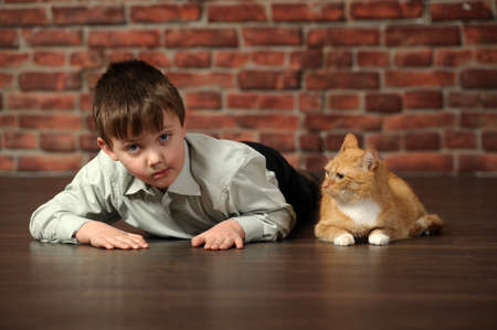 be alert: a boy and a cat near
