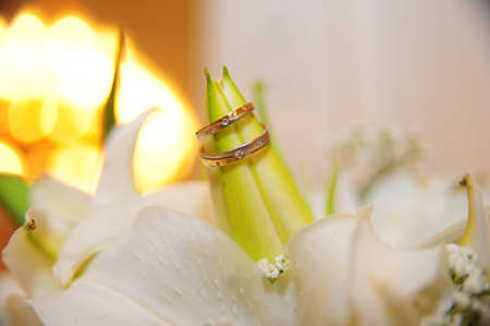Wedding rings on a lily bud photo