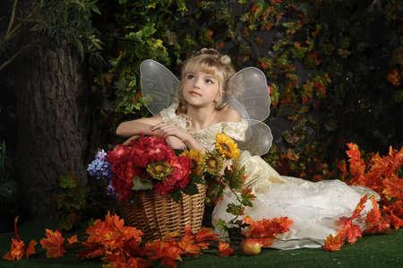 animal angelic: young fairy