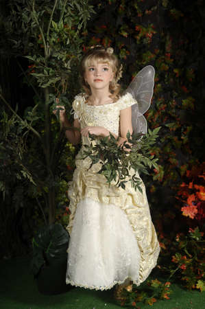 young fairy photo