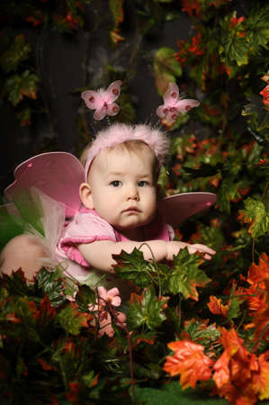 little fairy with wings photo