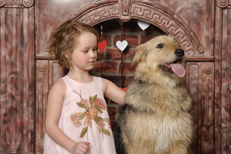 girl with big dog photo