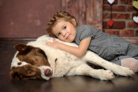 little girl with a big dog Stock Photo