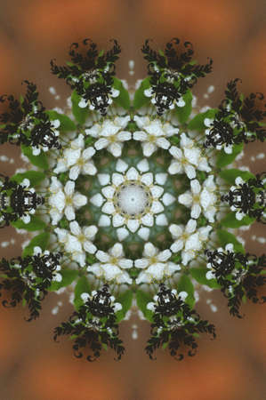 green floral ornament photo