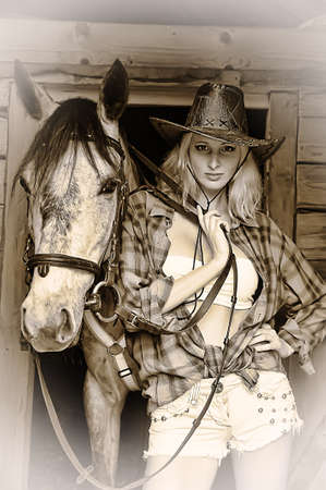 Sexy slim blonde with a horse Stock Photo - 21690763