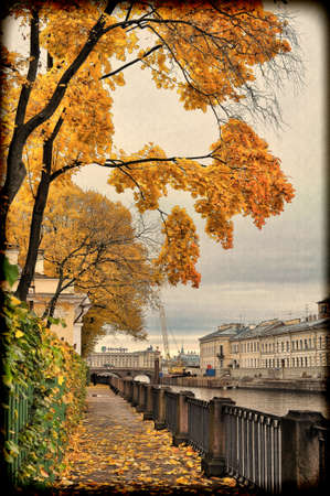 Tree branches with autumn leaves hanging over the Fontanka River, Summer Garden, St  Petersburg, Russia,