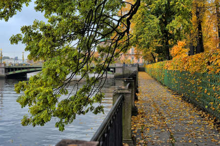 Tree branches with autumn leaves hanging over the Fontanka River, Summer Garden, St  Petersburg, Russia, photo
