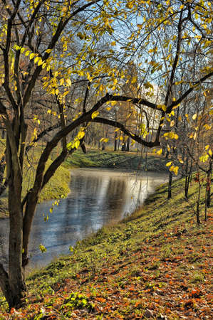 Multicolored autumn trees near river photo
