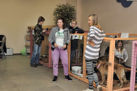 The Way Home - show the distribution of animal shelter Rzhevka, St  Petersburg, Russia
