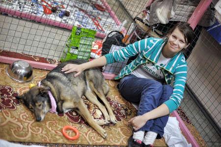 The Way Home - montrent la répartition de refuge pour animaux Rzhevka, Saint-Pétersbourg, Russie