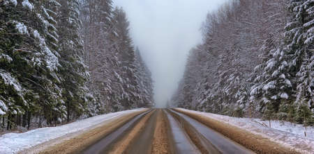 winter road: Winter road with some fog, Russia