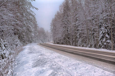 Winter road with some fog, Russia  photo