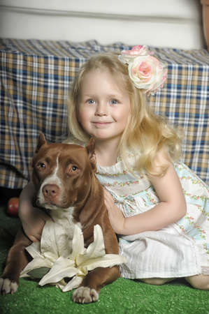 Little girl with brown dog in studio  photo