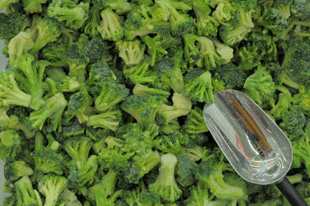 Background of frozen raw vegetables photo