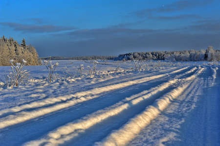 Beautiful winter snowy road through the field in the forest  photo