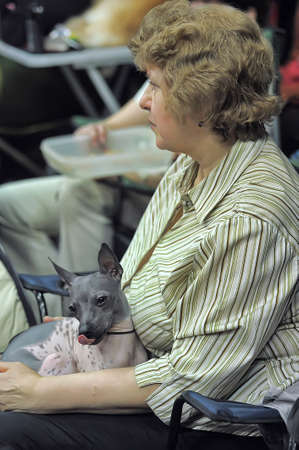 assessments: International dog show