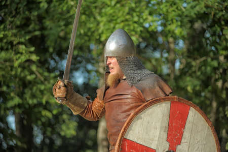 buckler: viking warrior