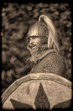 hauberk: viking warrior