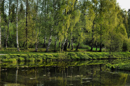 Spring landscape at the lake, Russia photo