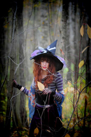 woman witch in hat in the woods photo
