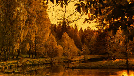 autumn evening by the lake photo