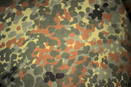 munition: Camouflage pattern background, a military textile.
