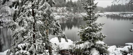 Unfrozen lake in the winter forests of Karelia, Russia. photo
