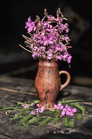 collected: Collected willow-herb flowers in a ceramic jug.