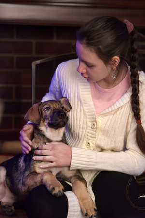 mongrel: Teen girl with mongrel puppie. Stock Photo