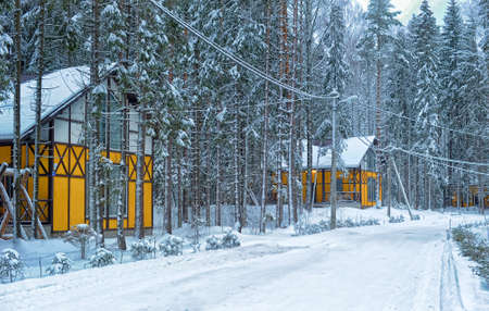 yellow house: Yellow house with white in the winter forest.