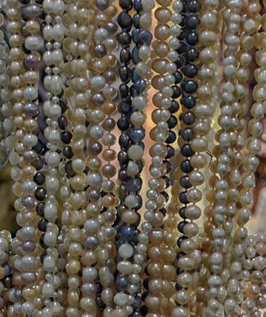 string of pearls: String of white real river pearls. Stock Photo
