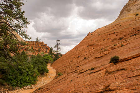 Rainy day between the canyons in zion national park Stock Photo