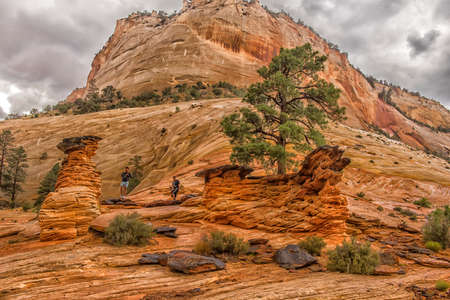 Zion National Park on a rainy day