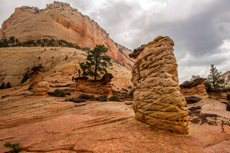 Rock Formations, Zion National Park, Utah USA
