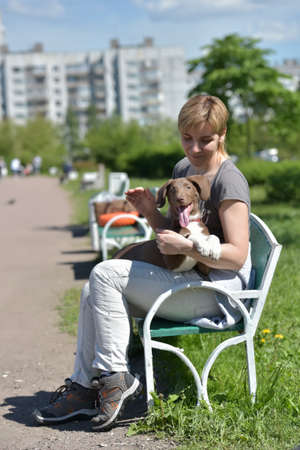 Girl with a puppy in her arms sits on a bench in the summer in a city park photo
