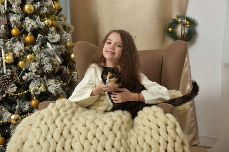 girl in an armchair with a cat at christmas time