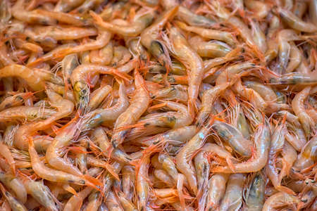 Shrimps. The fish market. Turkey, Istanbul Stock Photo