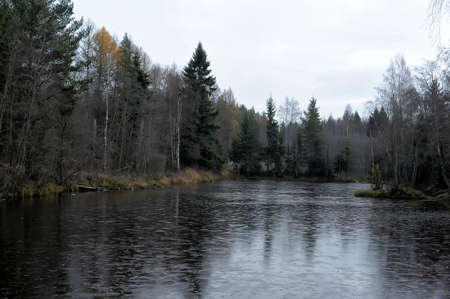 autumn, the lake covered with first thin ice