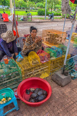 Cambodia, Phnom Penh 28,06,2017 Turtles and birds in cages near the temple. Sold to set free and improve karma Redakční