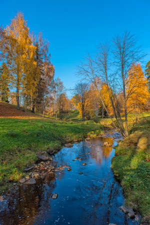 Autumn landscape. Stream in the Oranienbaum Park.