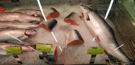 Russia, St. Petersburg 20,11,2018 Fresh fish salmon in the supermarket