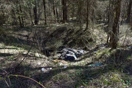 heaps of garbage bags thrown out in the woods