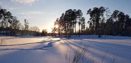 zonsondergang in de winter en lange schaduwen van bomen in de sneeuw Stockfoto