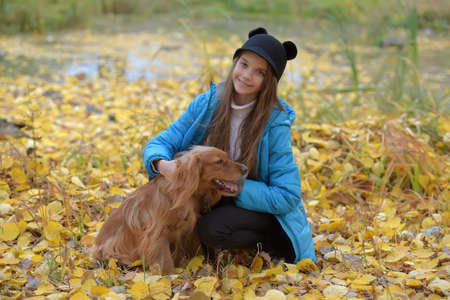 girl in a blue jacket walks with an English spaniel in an autumn park Stock Photo